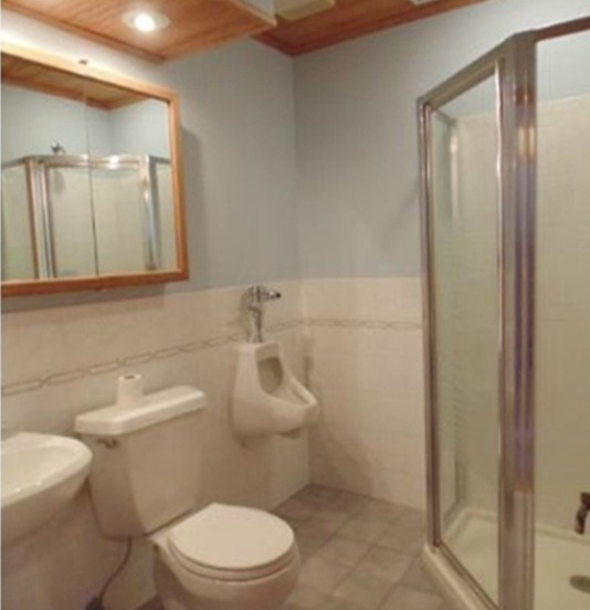 Basement Bathroom DIY Nice Things - Building a basement bathroom