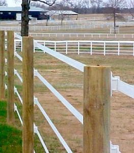 Electrified Horse Fence
